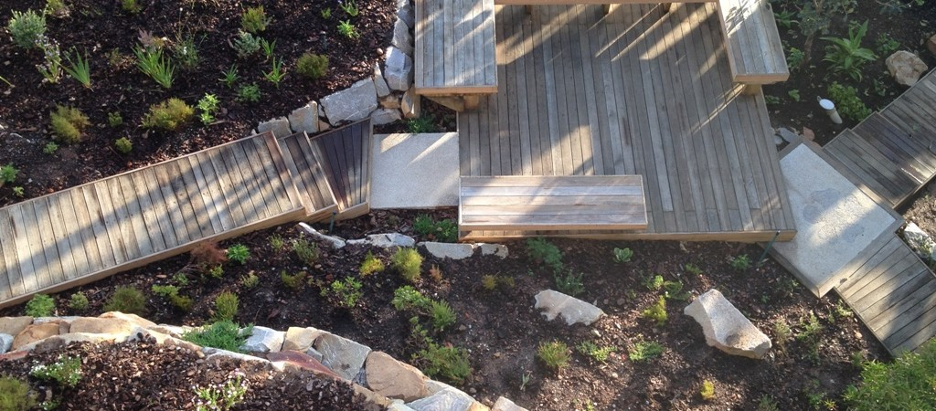 Meeting spot in the Fynbos