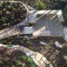 Meeting spot in the Fynbos thumbnail
