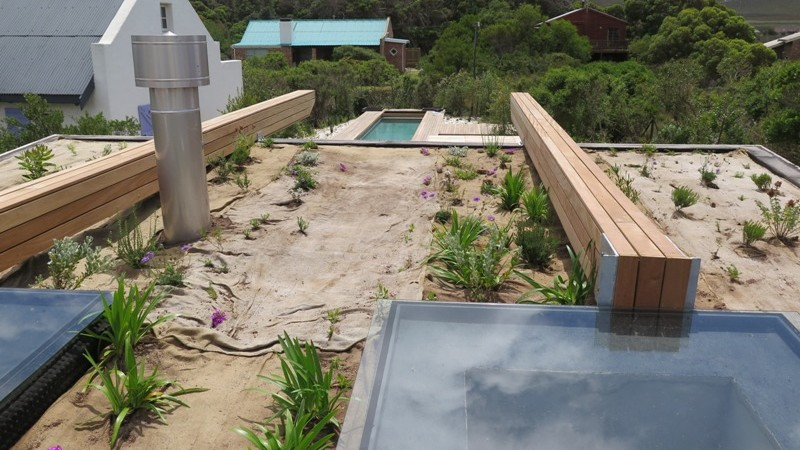 The pool pavilion roof planted