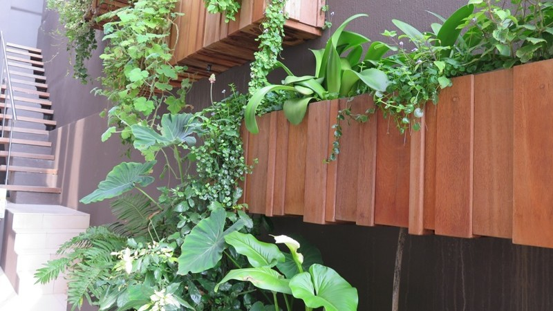 Timber Boxes on the wall outside the kitchen