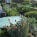 The roof garden thumbnail