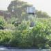 Roof garden and Flue thumbnail
