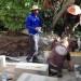 Rob laying the Sandstone blocks thumbnail