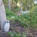 Owl sculpture in the woodland thumbnail