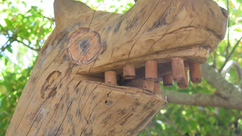 Head made from Eucalyptus