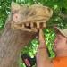 Dragon dental thumbnail
