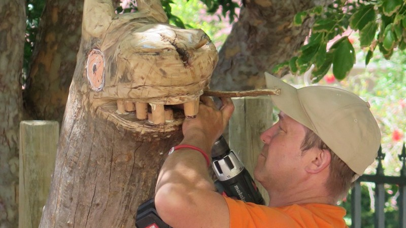Bood detailing the head