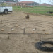 I used irrigation dripline to lay out the design and fixed this in position with crimped wire stakes thumbnail