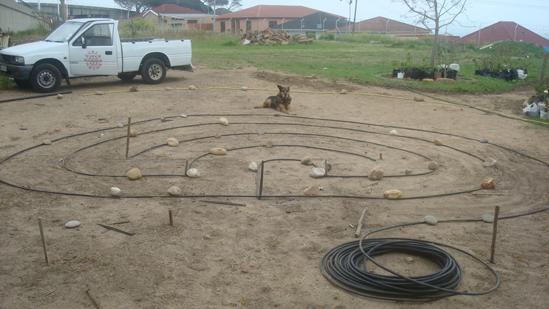 I used irrigation dripline to lay out the design and fixed this in position with crimped wire stakes