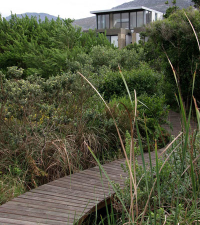 The Boardwalk through the Indigenous wetlands to the beach constructes by Pete Louw
