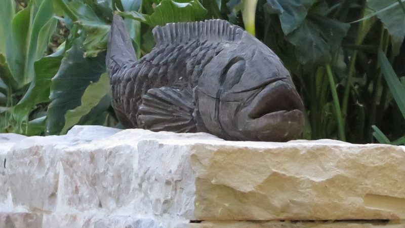 Fish sculpture on koi pond wall