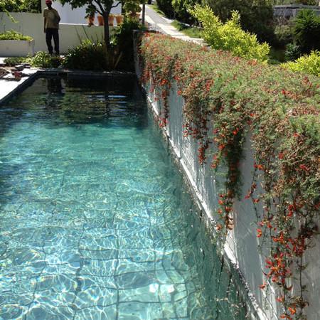 Kenmore Road - Pool