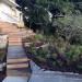 Boardwalks through the Fynbos thumbnail