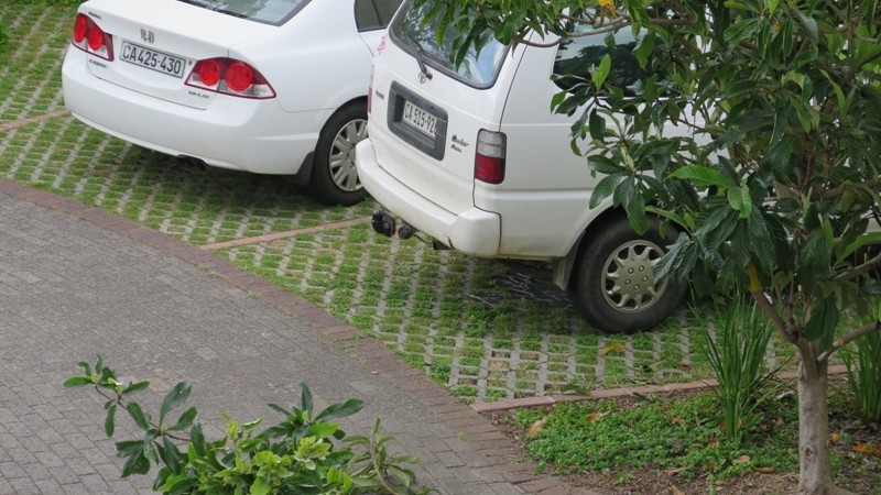 Lawn blocks parking