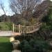 swing bridge into the oak canopy thumbnail