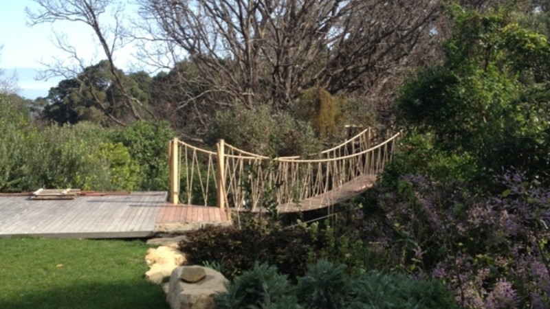 swing bridge into the oak canopy
