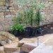 Garden planting (2) thumbnail
