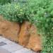 Sandstone wall thumbnail
