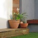Pots on the clad backyard step thumbnail