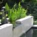 Sheet waterfall off black stone thumbnail